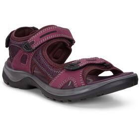 ECCO Offroad Sandals Women grey/purple